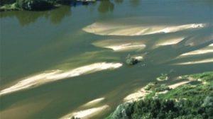 Etude de la diffusion de polluants sur la Loire